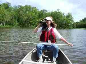A bird-watcher from NJ enjoys paddling on the Chicone Creek near Vienna